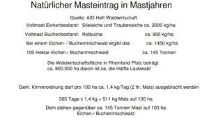 Hektarertrag von Kirrung und natürlicher Mast im Vergleich (RLP)