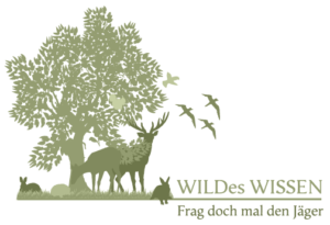 wildeswissen
