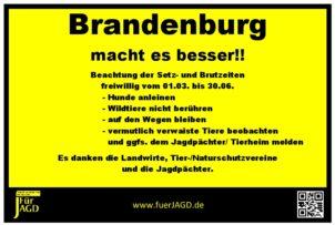 Brut-und-Setzzeit-10x15-Brandenburg